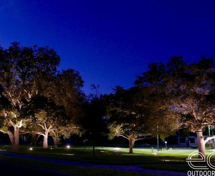 Oak Park 6