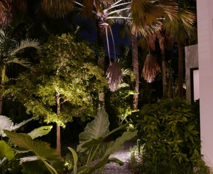 South-Miami6