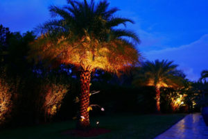 Free Outdoor Lighting Consultation Miami