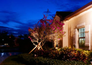 Outdoor Lighting Demostration Miami